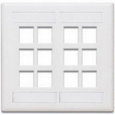 Leviton 42080-12W Leviton 42080-12W 2-Gang Standard Wallplate With ID Window; Box/Flush, (12) Port, High Impact Flame Retardant Plastic, White
