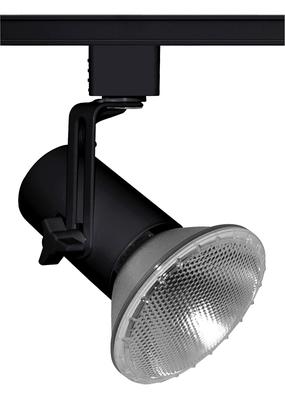 Lithonia Lighting / Acuity T691NAT T691NAT JUNO MINI-SWIVEL PAR16/20/30/38