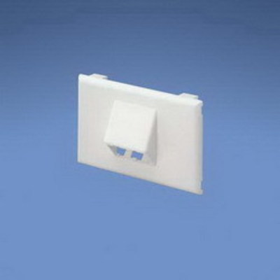 Panduit T70FH2IW Panduit T70FH2IW Low Voltage Horizontal Sloped Communications Faceplate; 4.5 Inch Length x 0.8 Inch Width x 2.75 Inch Height, Plastic, Off White