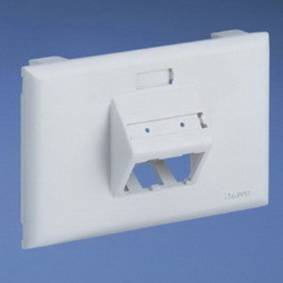 Panduit UIT70FH2IW Panduit UIT70FH2IW Mini-Com® Ultimate ID 1-Gang Sloped Faceplate; (2) Communication Outlet, PVC, Off White