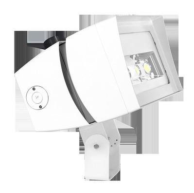 RAB Lighting FFLED180SF/D10/PCT FFLED180SF/D10/PCT RAB 1807HX6V 5K120-277 TWSTLK PCL SLPFR BNZ