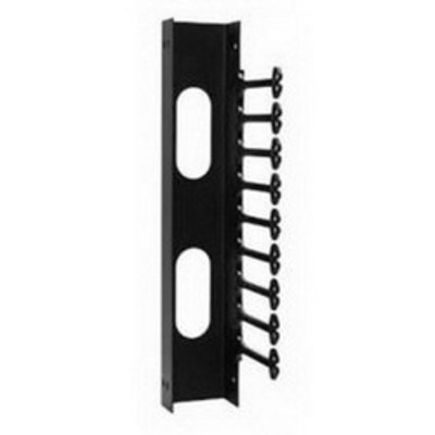 nVent HOFFMAN E19C20U Hoffman E19C20U Versarack™ Swing Out Rack Cable Manager; Vertical Wall Mount, 20-Rack Unit, RAL 9005 Black Textured and Low Gloss Polyester Powder Paint
